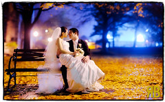 Wedding Bliss (Ryan Brenizer) Tags: nyc newyorkcity wedding newyork love wet leaves rain groom bride nikon bokeh bronx formal fordhamuniversity 85mmf14d d700 ryansstrangelenses stefanieandjerry bokehpanorama brenizermethod