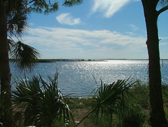 Gulf of Mexico along Florida's Nature Coast (*97) Tags: gulfofmexico florida bayport westcentralflorida naturecoast