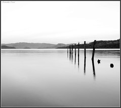 Minimalism (Samantha Nicol Art Photography) Tags: uk white black birds silhouette reflections scotland nikon samantha minimalism posts lochlomond nicol abigfave duckbaymarina theperfectphotographer photoexplore sammikins1976 samanthanicolartphotography