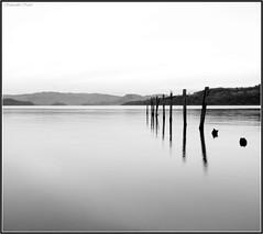 Minimalism (Samantha Nicol Art Photography) Tags: uk white black birds silhouette reflections scotland nikon samantha minimalism posts lochlomond nicol abigfave duckbaymarina theperfectphotographer photoexplore sammikins1976 samanthanicolartphotography