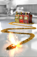 Hot & Spicy (Lode Schildermans) Tags: food hot kitchen advertising photo fireworks spice ad explosion firework curry photograph advert spicy paprika gunpowder chille sb800 sb28 strobist