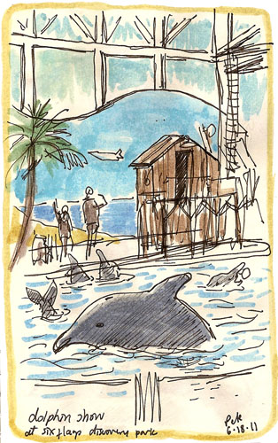 six flags: dolphins