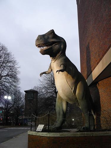 Tyrannosaurus rex, Museum of Science, Boston