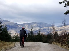 Biking at Grizedale