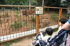 新竹市立動物園30