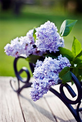 happy mama's day!!! (Lani Barbitta) Tags: explore lani lilacs 50mm18 happymothersday supershot nikond80 diamondclassphotographer flickrdiamond lanibarbitta sceneuponmywoodenbench barbitta