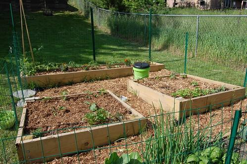 Garden 053108-02