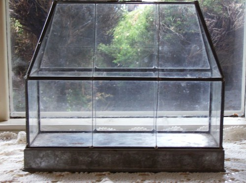 Glass Terrarium