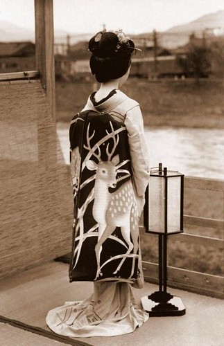 SHOW ME THE OBI !  A Maiko's Spectacular Fashion Statement in Old Kyoto, Japan / Okinawa Soba