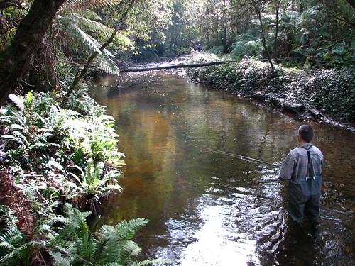 Tanjil River 09