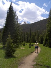 HPIM1244 (jimvickers) Tags: colorado elk rockymountainnationalpark continentaldivide bouldercreekpath summer2008