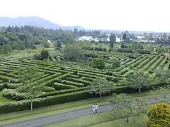 Garden (SaudiSoul) Tags: green nature garden indo حديقه طبيعة طبيعه حديقة غابة غابه