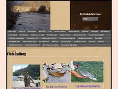 gallery-shot