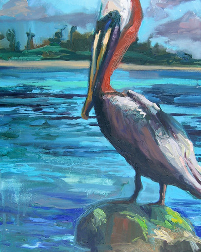 Aruba Pelican_20x16