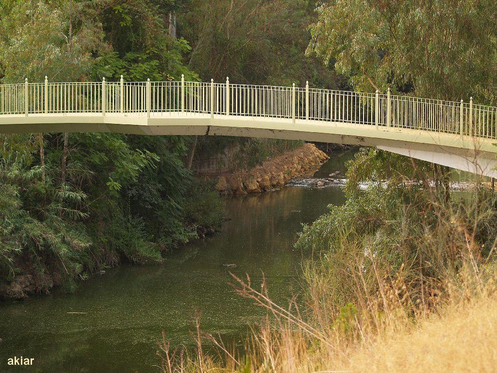 Debajo del Puente.