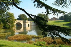 2008-09-21-790_1 Blenheim Grand Bridge Palace & Lake (Martin-James) Tags: explorer explore churchill 500views blenheim woodstock statelyhome oxfordshire 1000views capabilitybrown vanbrugh blueribbonwinner dukeofmarlborough outstandingshots flickrsbest bej mywinners abigfave platinumphoto anawesomeshot favoritegarden grandbridge diamondclassphotographer theunforgettablepictures theperfectphotographer goldstaraward absolutelystunningscapes fairrosamund rubyphotographer guasdivinas dragondaggerphoto statelyhomesofengland