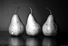 When Life Gives You Pears, Take Pictures! (raisinsawdust - (aka: tennphoto)) Tags: light stilllife fruit nikon shadows pears searchthebest study trio tabletop arranged blueribbonwinner d80 abigfave nikond80 anawesomeshot