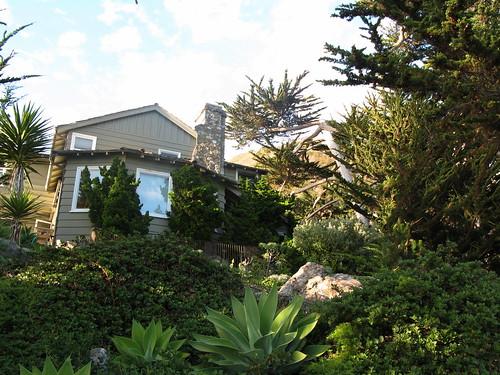 Central Coast 2007 288