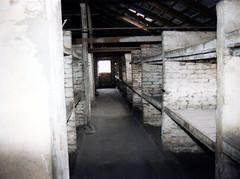 1996-090625 (bubbahop) Tags: holocaust experiments war wwii 1996 poland medical worldwarii auschwitz worldwar2 birkenau concentrationcamp oswiecim mengele oświęcim europetrip4