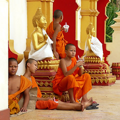 Young Buddhist monks (Bn) Tags: temple buddha religion vivid monk buddhism laos enlightenment topf100 soe topf200 vientiane blueribbonwinner supershot 100faves 200faves fruitshakes youngmonks golddragon mywinners abigfave worldbest aplusphoto lifeissuffering colourartaward goldstaraward theravadaschool serveasofficiants spiritualtraining searchingenlightenment monksinorange