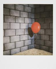 Trapped (olla podrida) Tags: polaroid sx70 600 ollapodrida