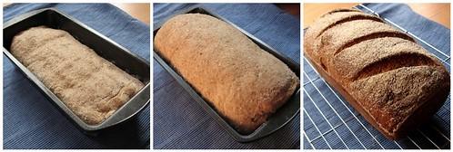 Wholemeal Loaf, 26/10/2008