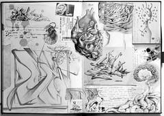 blackbook (Ale Senso) Tags: brain hearth bomba angelo cuore blackbook senso dedalo mercurio fachiro cervello viscere