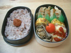 Gyoza bento for me! (skamegu) Tags: japan rice bento japanesefood