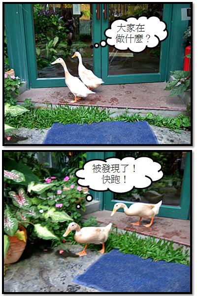 千樺餐廳41