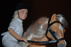 a nice shot of Lucy and her arabian, Peach (Tse'ko) Tags: horses horse jessie grey lucy model pegasus champion peach grand plastic pony ponies arabian sylvia champions palomino arabians breyer
