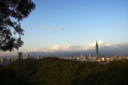 中埔山山頭下方眺望台北101