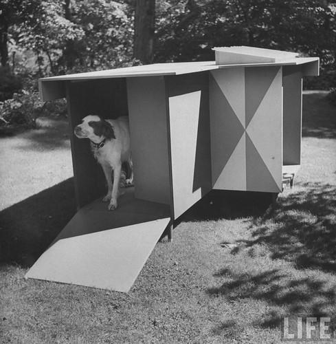 LIFE: dog house