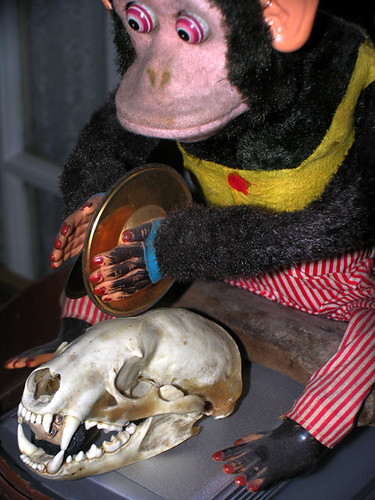 BONELUST - Badger Skull & Vintage Cymbal Playing Monkey Toy