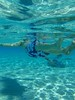 Swimming with the Rays (palmer.ink) Tags: stingray stingraybay caymans