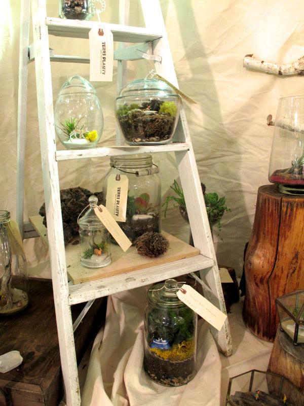 terri planty booth