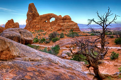 Morning at Turret Arch (Rozanne Hakala) Tags: park morning usa southwest tree tourism sunrise landscape outdoors dawn utah ut sandstone rocks arch desert scenic arches tourists erosion redrocks moab geology archesnationalpark archesnp turret hdr rockformations coloradoplateau turretarch entradasandstone windowsdistrict
