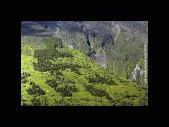 Pico (so caetano) (osvaldo_soeiro) Tags: pico hdr montanha aores