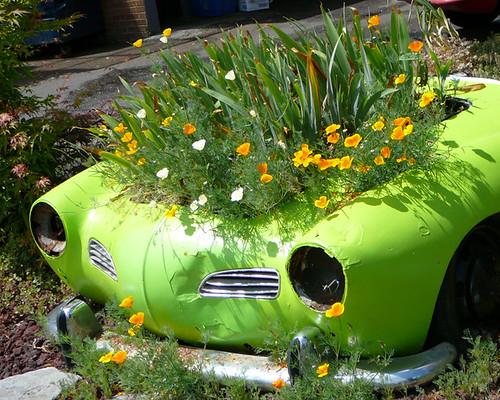 Flower Box, by Roadstars