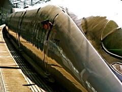 500-Series Shinkansen (kamoda) Tags: station japan train transport platform railway jr 2008  shinkansen nozomi  500series fukuyama g9