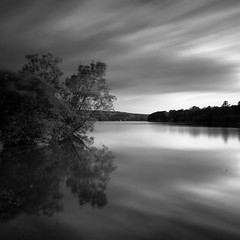Blagdon Lake III (Adam Clutterbuck) Tags: uk longexposure greatbritain england blackandwhite bw lake reflection tree monochrome clouds square landscape mono blackwhite cloudy unitedkingdom britain somerset bn reservoir foliage reflected elements swamp gb marsh bandw sq limitededition blagdon greengage blagdonlake adamclutterbuck sqbw bwsq showinrecentset shortedition le50 limitededition50