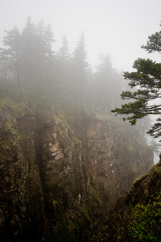 Cape Split Trail
