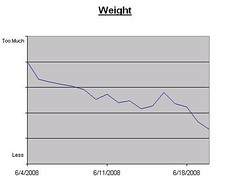 20080620: Weight Graph so Far