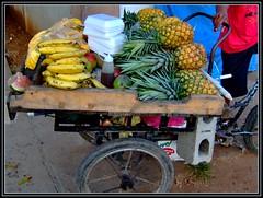 Carreta de frutas (la india del cibao) Tags: frutas mercado republicadominicana santodomingo vegetales piñas guineos abigfave laindiadelcibao