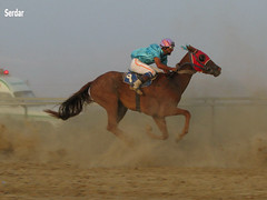 kaww by Serdar  Turkmen