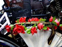 Bike Rack Flora