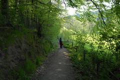 Hiking - Altdorf (haegar52002) Tags: 2008 morgen ein altdorf wunderschner