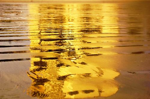 sandy-gold