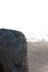 Point Lobos (ledges) Tags: williamscollege californiafieldseminar williamsmysticfall2008