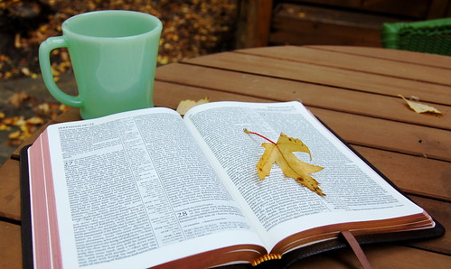 ESV Pitt Minion (Morning Read)