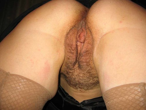 nice hairy blonde mature pussy pics: hairypussy
